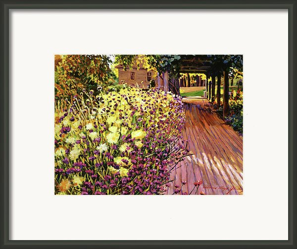 Purple And Gold Framed Print By David Lloyd Glover