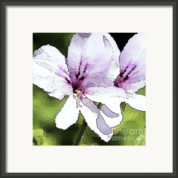 Purple Geranium Framed Print By Artist And Photographer Laura Wrede