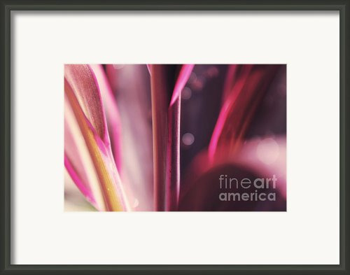 Purple Glow Framed Print By Jenny Rainbow