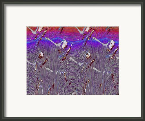 Purple Haze Framed Print By Tim Allen