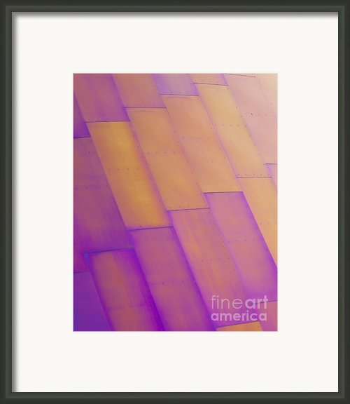 Purple Orange I Framed Print By Chris Dutton