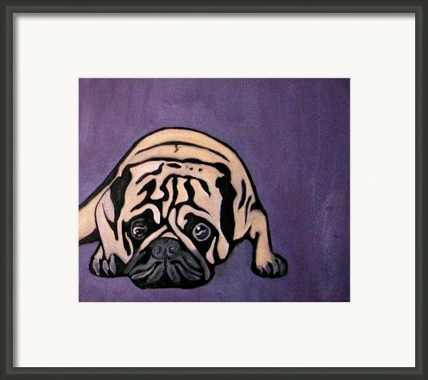Purple Pug Framed Print By Darren Stein