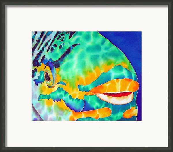 Queen Parrotfish Framed Print By Daniel Jean-baptiste