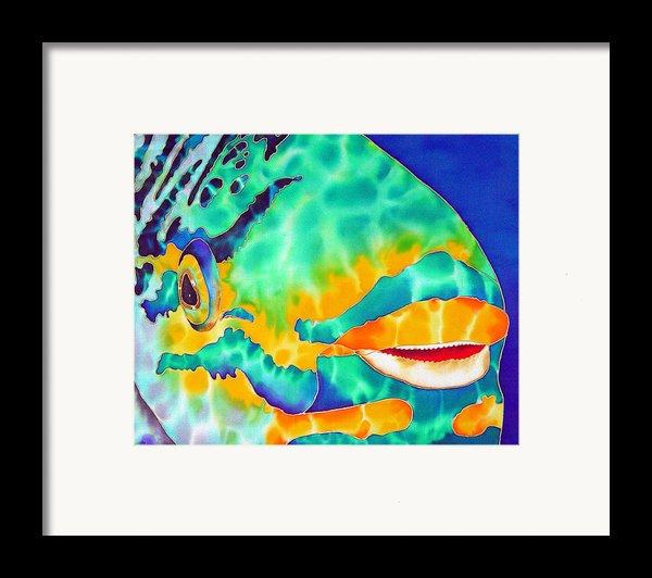 Queen Parrotfish Framed Print By Daniel Jean-baptiste