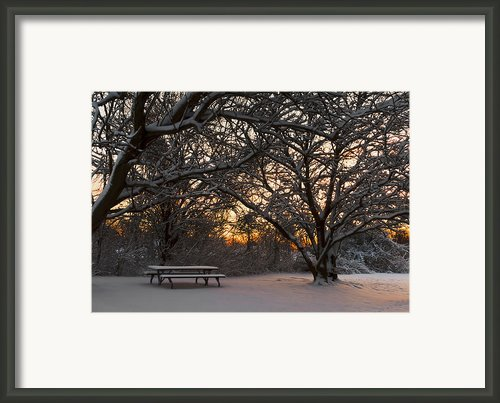 Quiet Moment Before Dawn Framed Print By Yelena Rozov