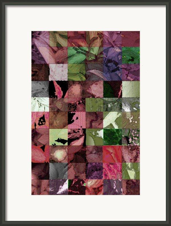 Quilt Framed Print By Tom Romeo