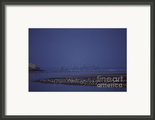 Rabat Morocco Framed Print By Antonio Martinho