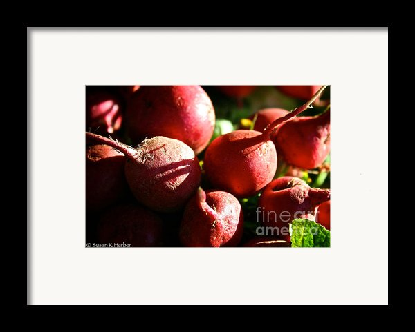 Radishes At Sunrise Framed Print By Susan Herber