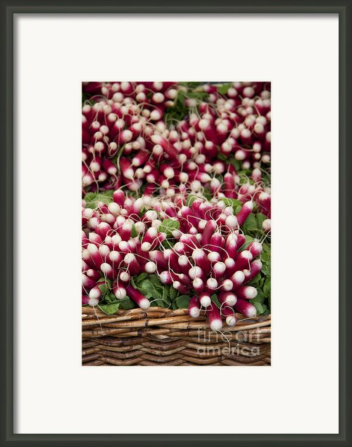 Radishes In A Basket Framed Print By Jane Rix