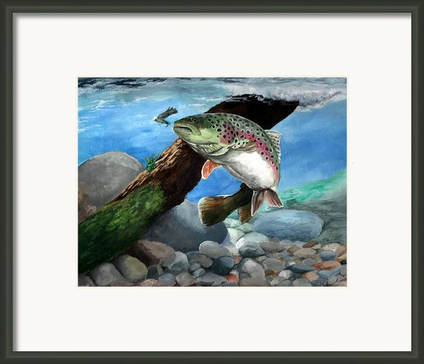 Rainbow Framed Print By Kathleen Kelly Thompson