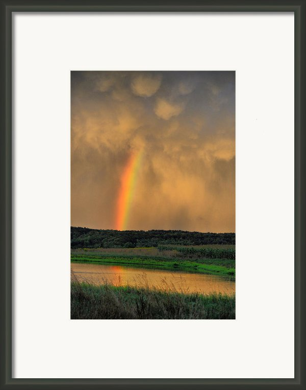 Rainbow Reflection Framed Print By Emily Stauring