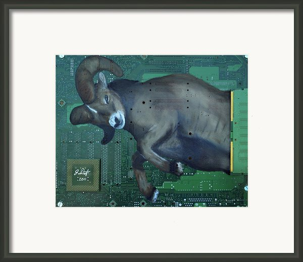 Ram Framed Print By Joe Dragt