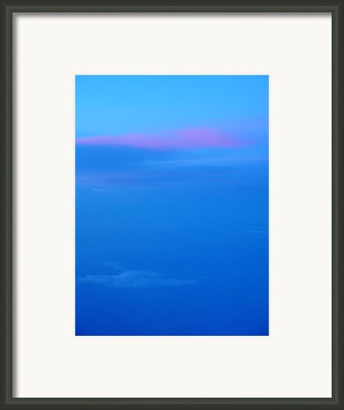 Raspberry Sorbet And The Blues Framed Print By Elizabeth Sullivan