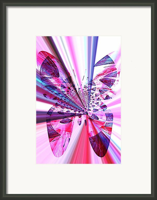 Rays Of Butterfly Framed Print By Amanda Eberly-kudamik