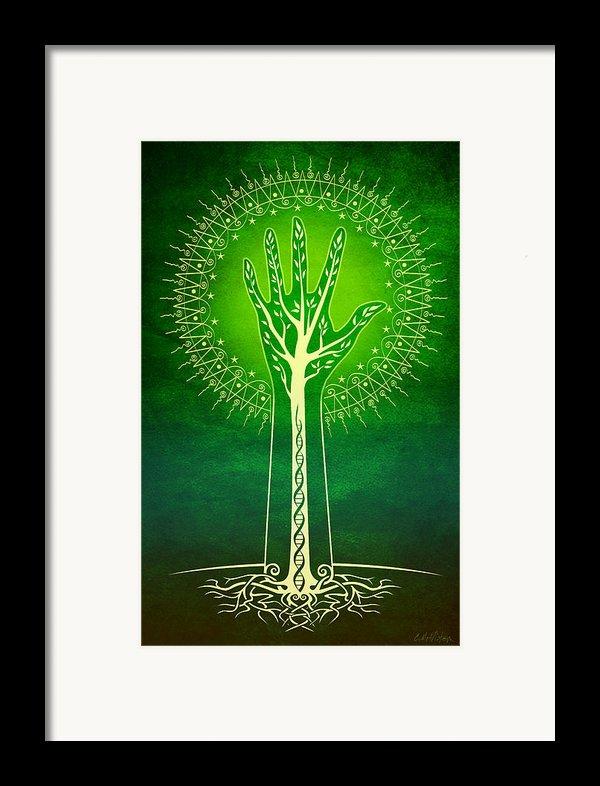 Reach Framed Print By Cristina Mcallister