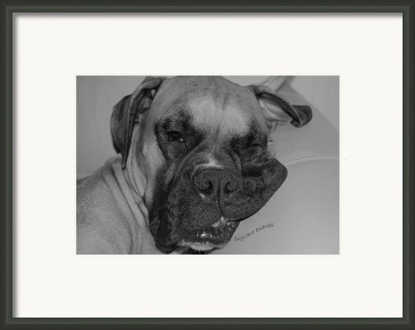 Really Comfy Framed Print By Digiart Diaries By Vicky B Fuller