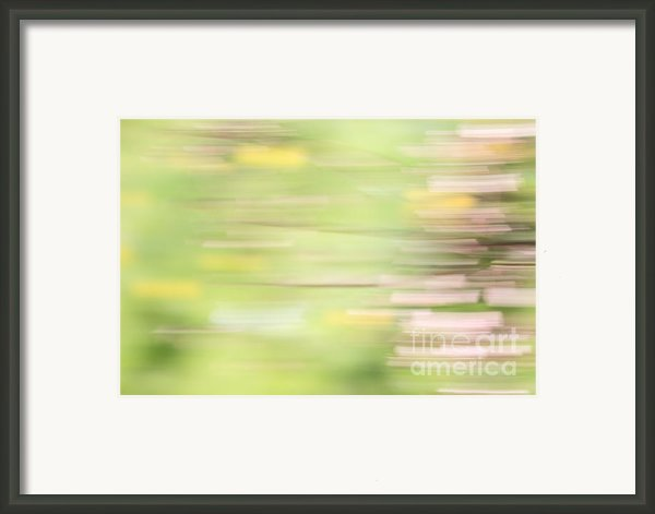 Rectangulism - S04a Framed Print By Variance Collections