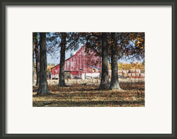 Red Barn Through The Trees Framed Print By Pamela Baker