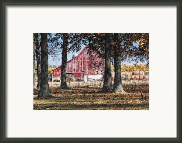 Red Barn Through The Trees Framed Print By Pamela Baker