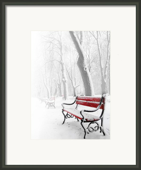 Red Bench In The Snow Framed Print By  Jaroslaw Grudzinski