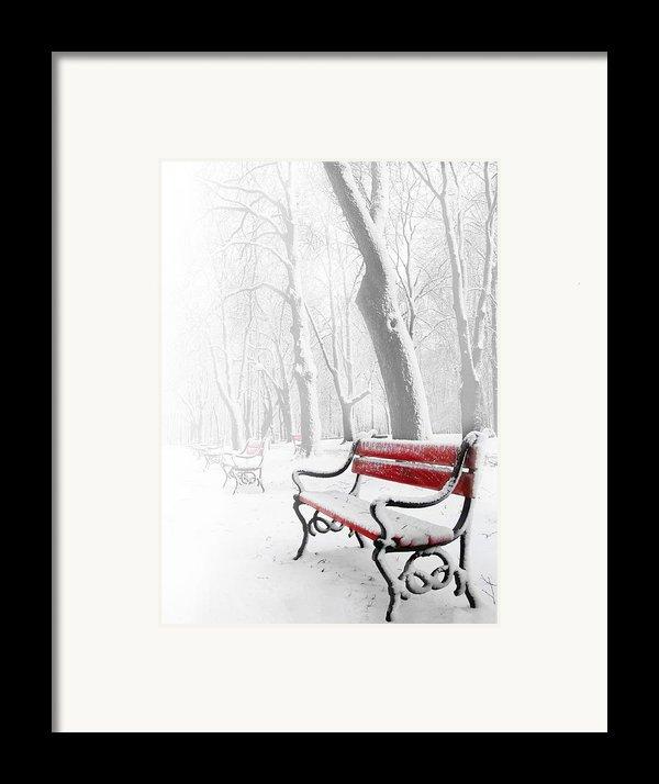 Red Bench In The Snow Framed Print By  Jaroslaw Grudzinski