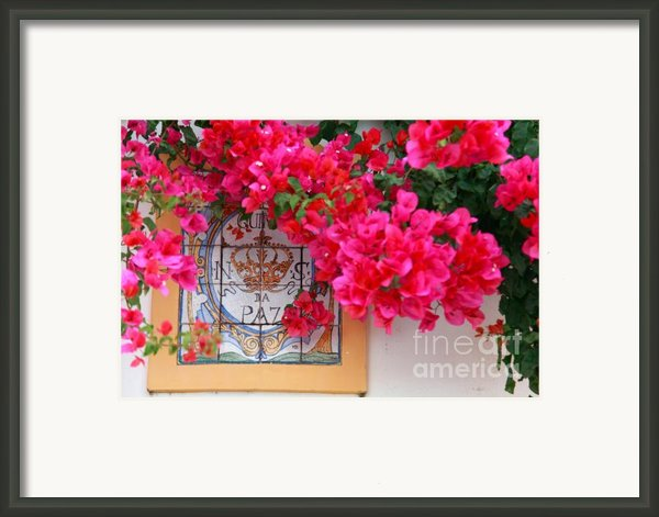 Red Bougainvilleas Framed Print By Gaspar Avila