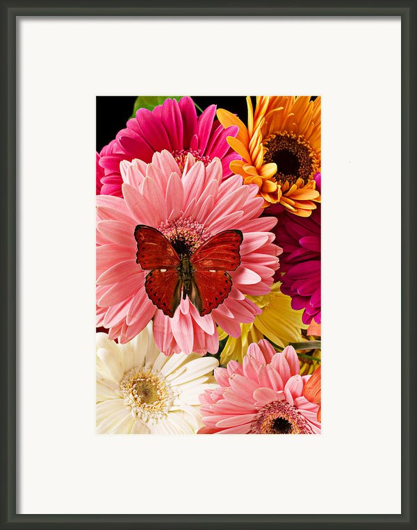 Red Butterfly On Bunch Of Flowers Framed Print By Garry Gay
