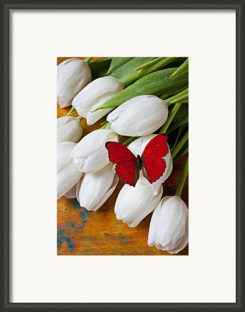Red Butterfly On White Tulips Framed Print By Garry Gay