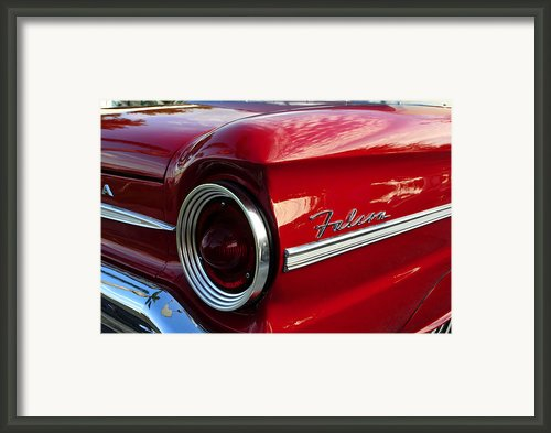 Red Falcon Framed Print By David Lee Thompson