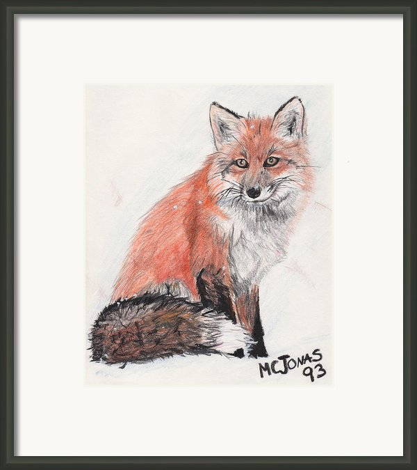 Red Fox In Snow Framed Print By Marqueta Graham