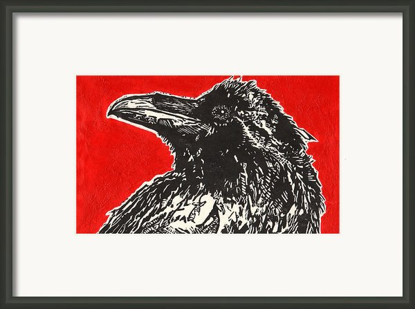 Red Hot Raven Framed Print By Julia Forsyth