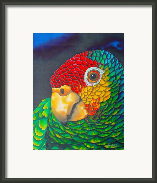 Red Lorred Parrot Framed Print By Daniel Jean-baptiste
