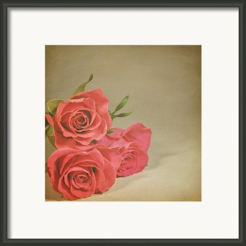 Red Roses Framed Print By Photo - Lyn Randle