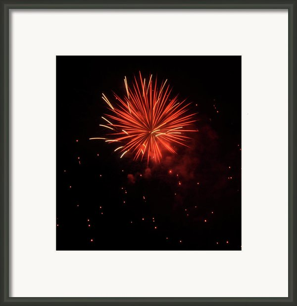 Redburst 2 Framed Print By Vijay Sharon Govender