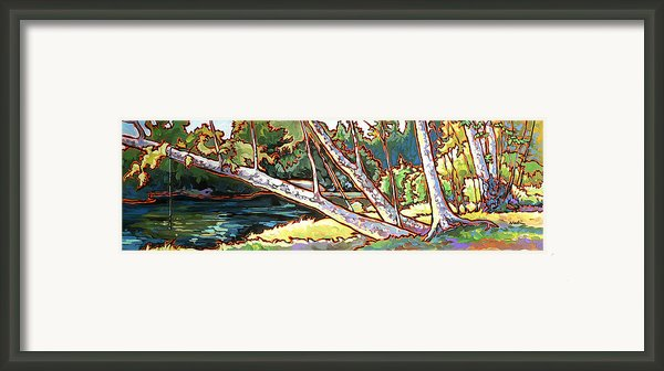 Redstone Swimmimg Hole Framed Print By Nadi Spencer