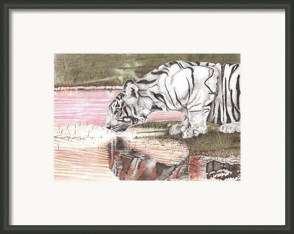 Reflecting Framed Print By Dustin Knighton