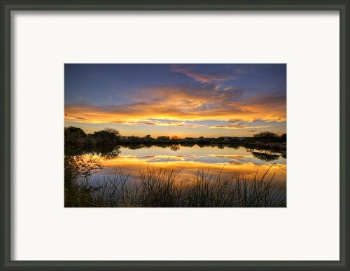 Reflections Of Gold  Framed Print By Saija  Lehtonen