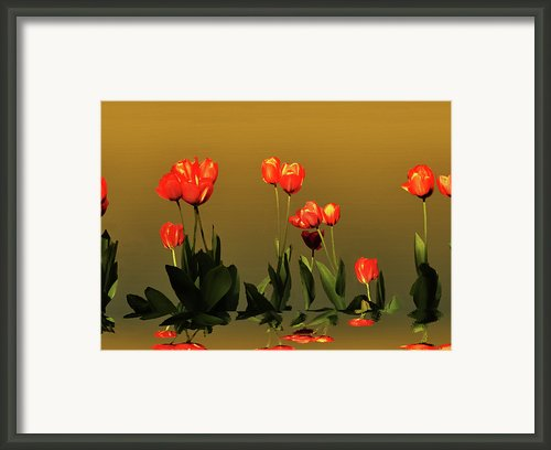 Reflective  Framed Print By Steven  Michael