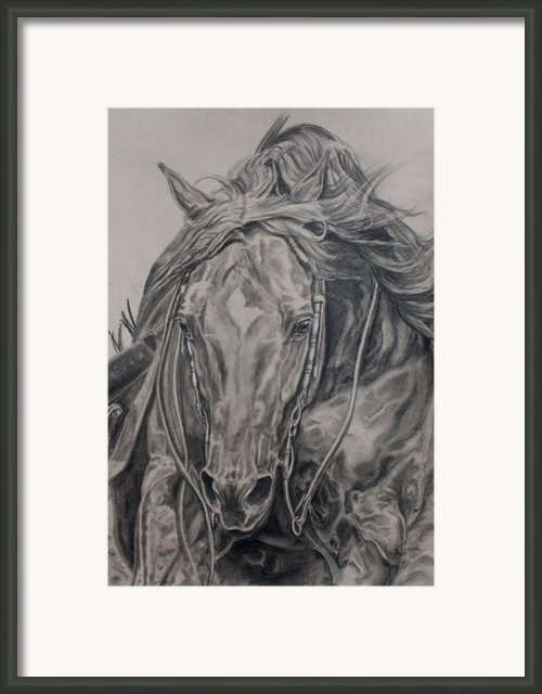 Reiner Framed Print By Jana Goode