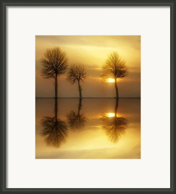Remains Of The Day Framed Print By Photodream Art