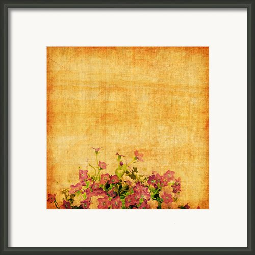 Retro Flower Pattern Framed Print By Setsiri Silapasuwanchai