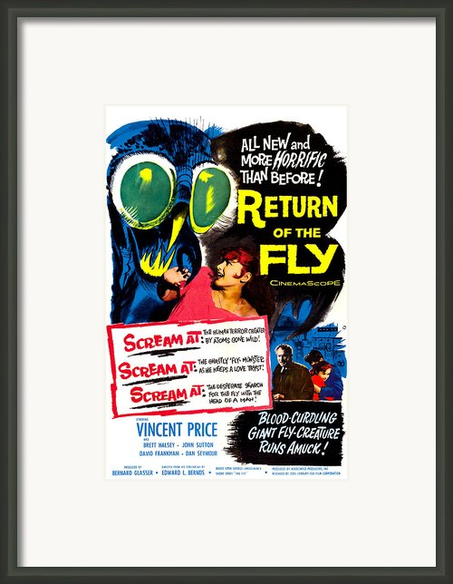 Return Of The Fly, Top Right Danielle Framed Print By Everett