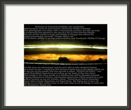 Rhino Sunset  Framed Print By Phillip H George