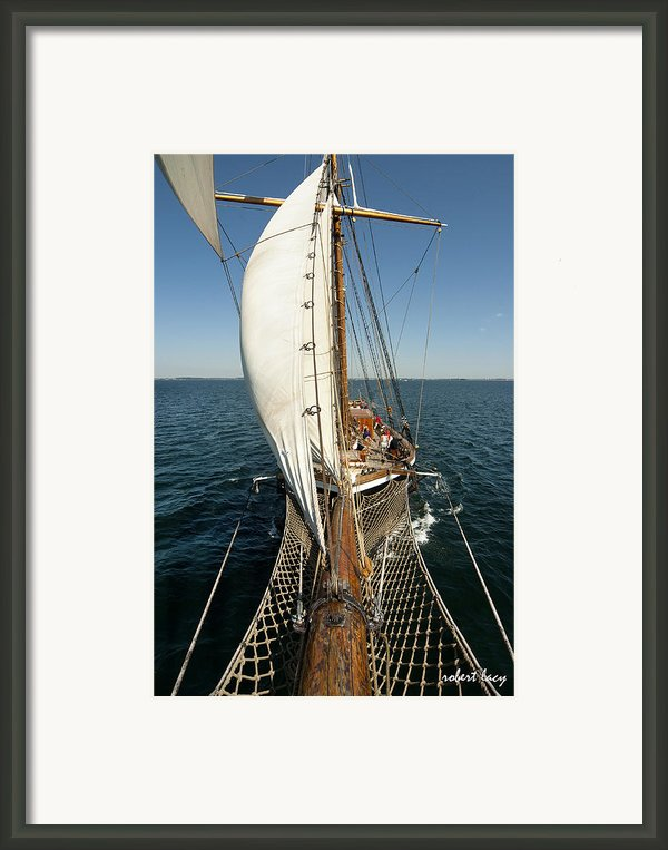 Riding The Breeze Framed Print By Robert Lacy