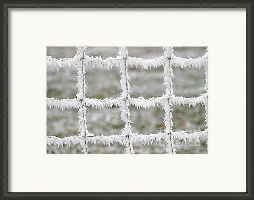 Rime Covered Fence Framed Print By Christine Till
