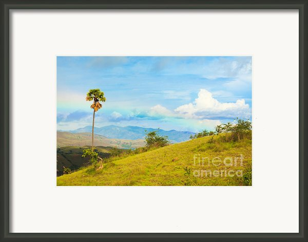Rinca Island. Framed Print By Mothaibaphoto Prints