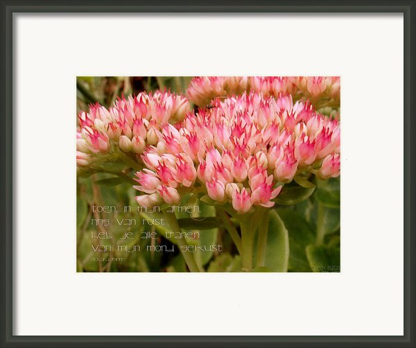 Ring Van Rust Framed Print By Yvon Van Der Wijk