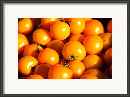 Ripe Yellow Tomatoes Framed Print By Connie Cooper-edwards