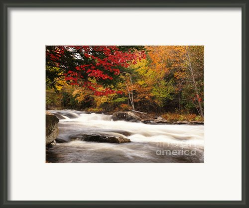 River Rapids Fall Nature Scenery Framed Print By Oleksiy Maksymenko