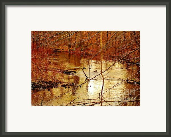 River Russel Framed Print By Lisa  Ridgeway